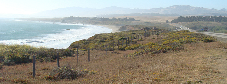 The Pacific Coast Highway between Cambria and San Simeon