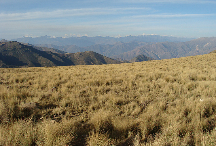 Landscape between Ayacucho and Ocros