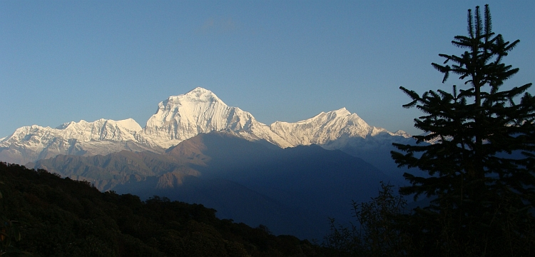 Dhaulagiri (8.167 m) from Poon Hill
